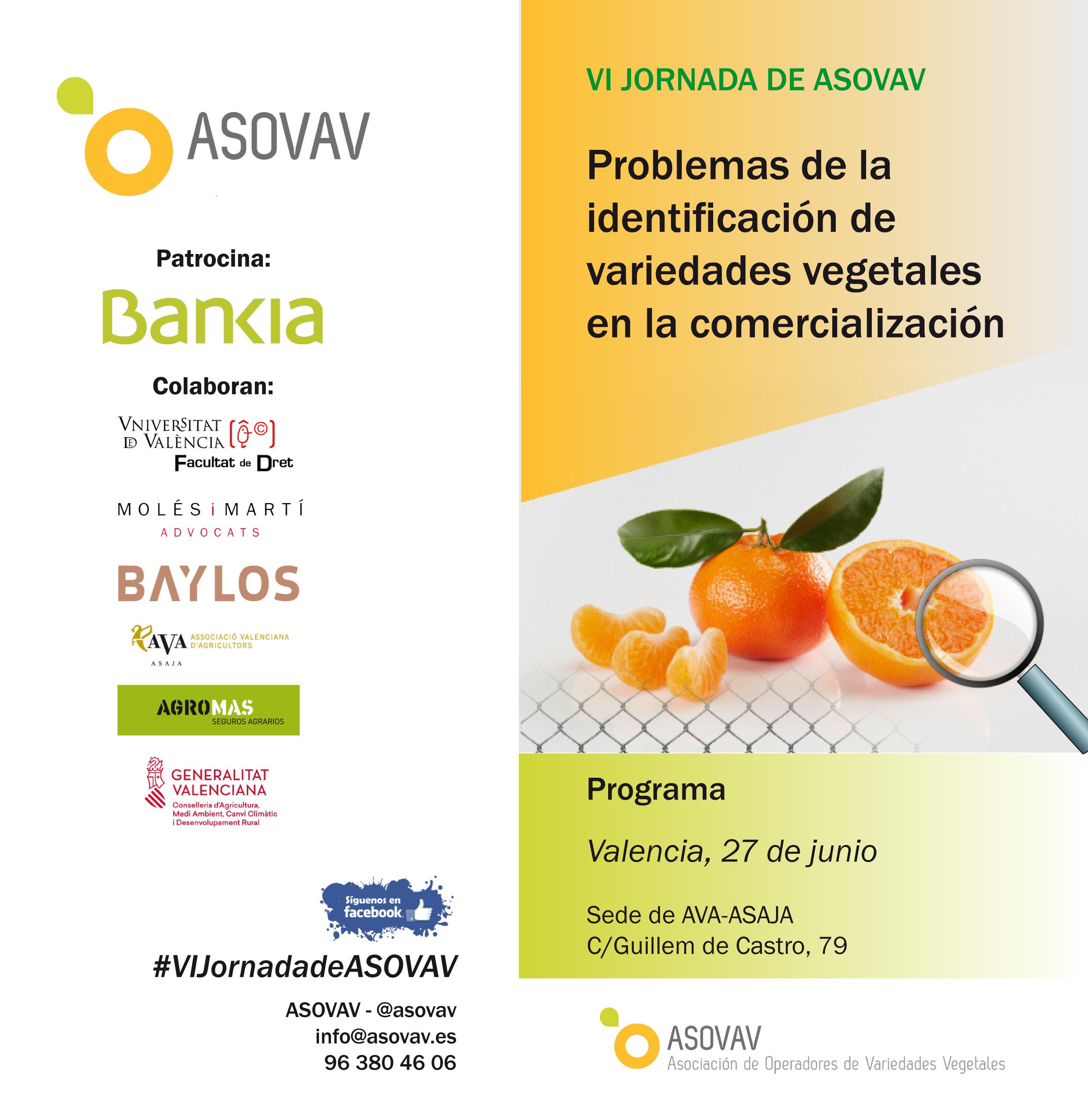 DÍPTICO JORNADAS ASOVAV 2018-1