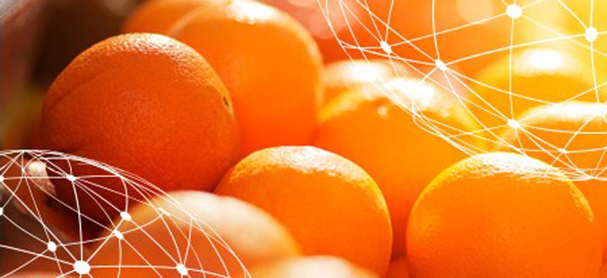 global_orange